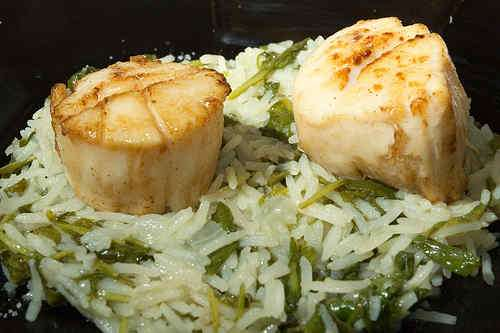 Photo of Scallops on Arugula, Watercress and Basmati Risotto